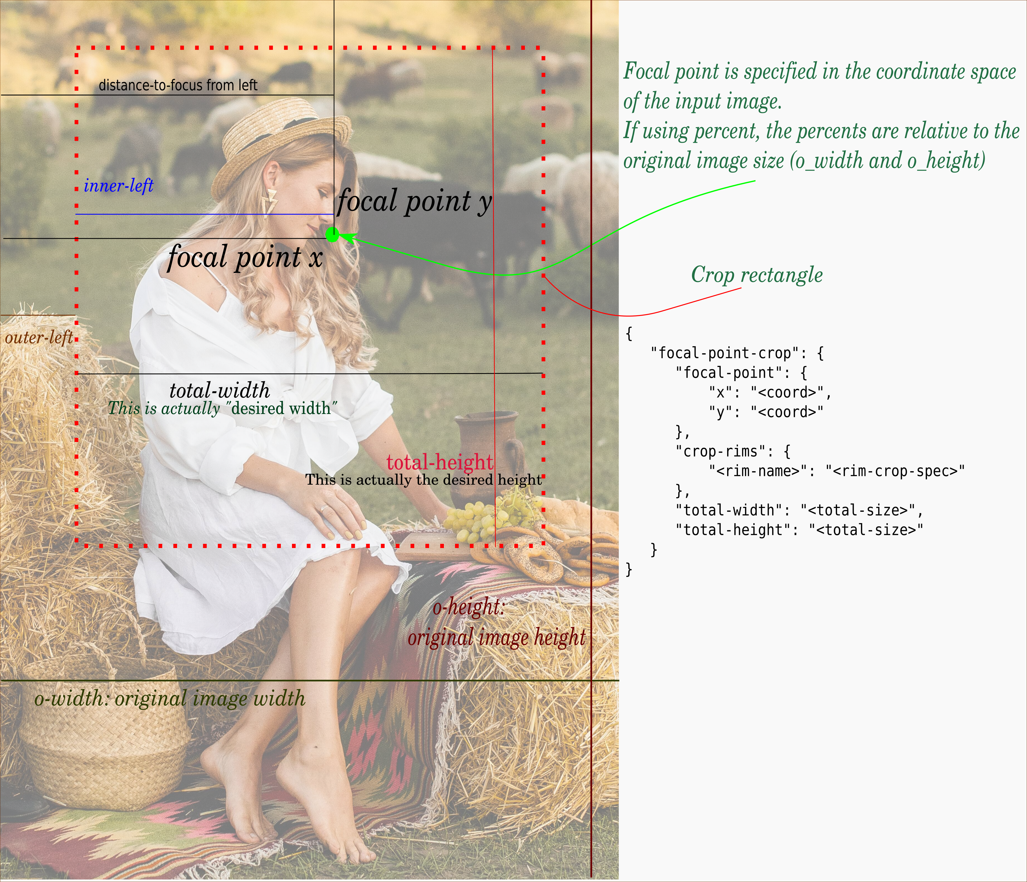 Diagram focal point cropping parameters figure woman